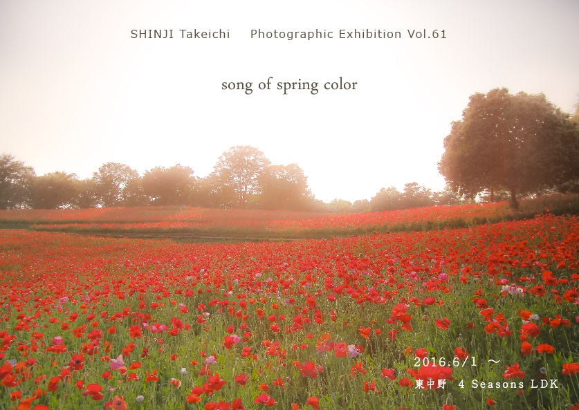 song of spring color