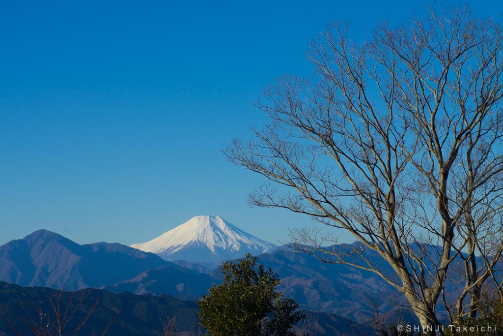 富士山2019
